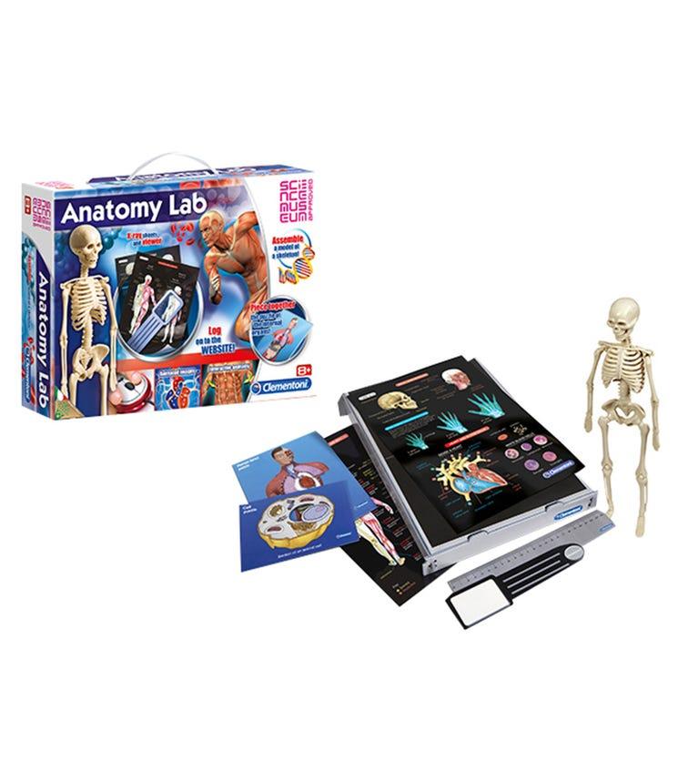 CLEMENTONI Science Game Anatomy Lab