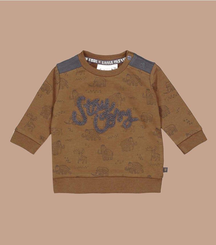 FEETJE AOP Sweater - Cool Adventure