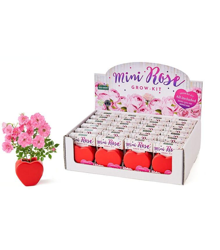 PARIS GARDEN Mini Rose - Single Piece
