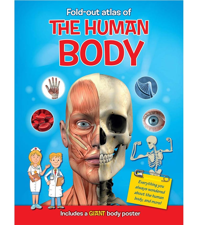 YOYO BOOKS Fold-Out Atlas Of  The  Human Body Includes A Giant Body Poster
