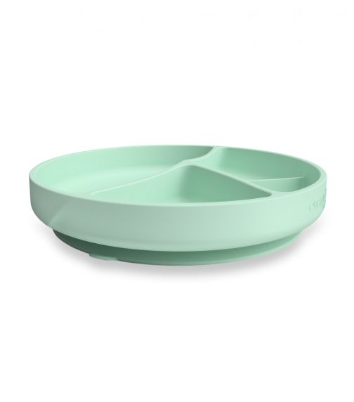 EVERYDAY BABY Silicone Suction Plate