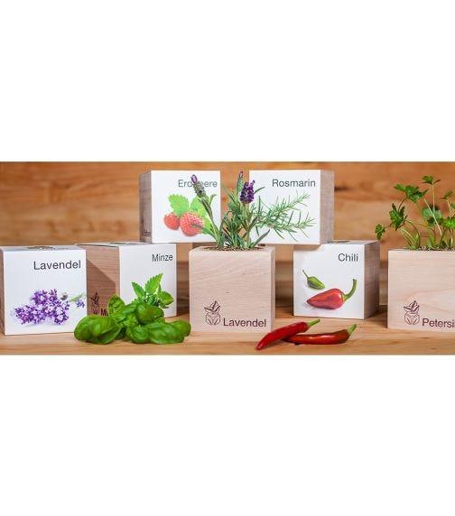 FEEL GREEN Ecocube Lavender