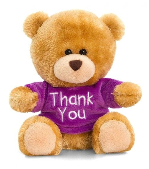KEEL TOYS UK 14 cm Pipp The Bear Thank You Soft Toy Assorted