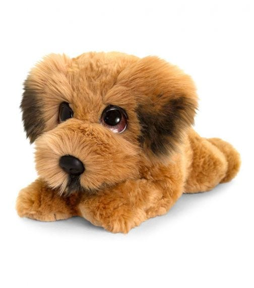 KEEL TOYS UK 32 cm Signature Cuddle Puppy Wheaten Terrier Soft Toy
